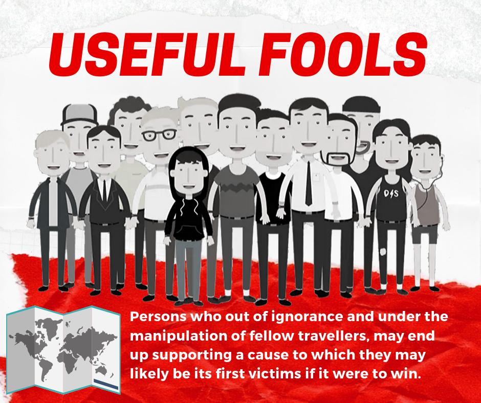 useful-fools-definition
